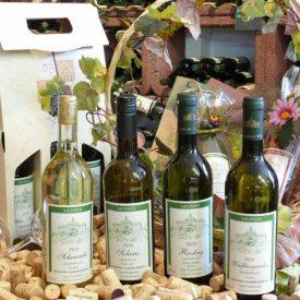 Gut Pesterwitz Wein