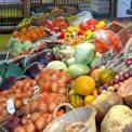 Gut Pesterwitz Bauernmarkt